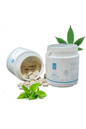 Pastilles Menthe 10% CBD - 120 - BioActif